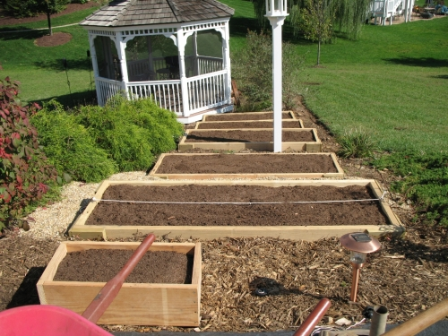 My first raised beds three seasons ago.