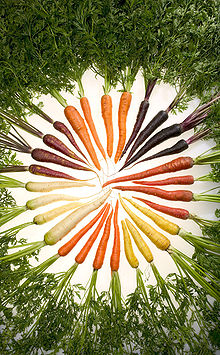 Carrots of Color