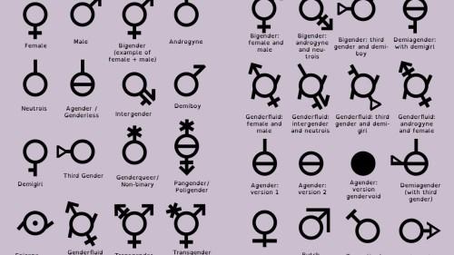 genderforidiots
